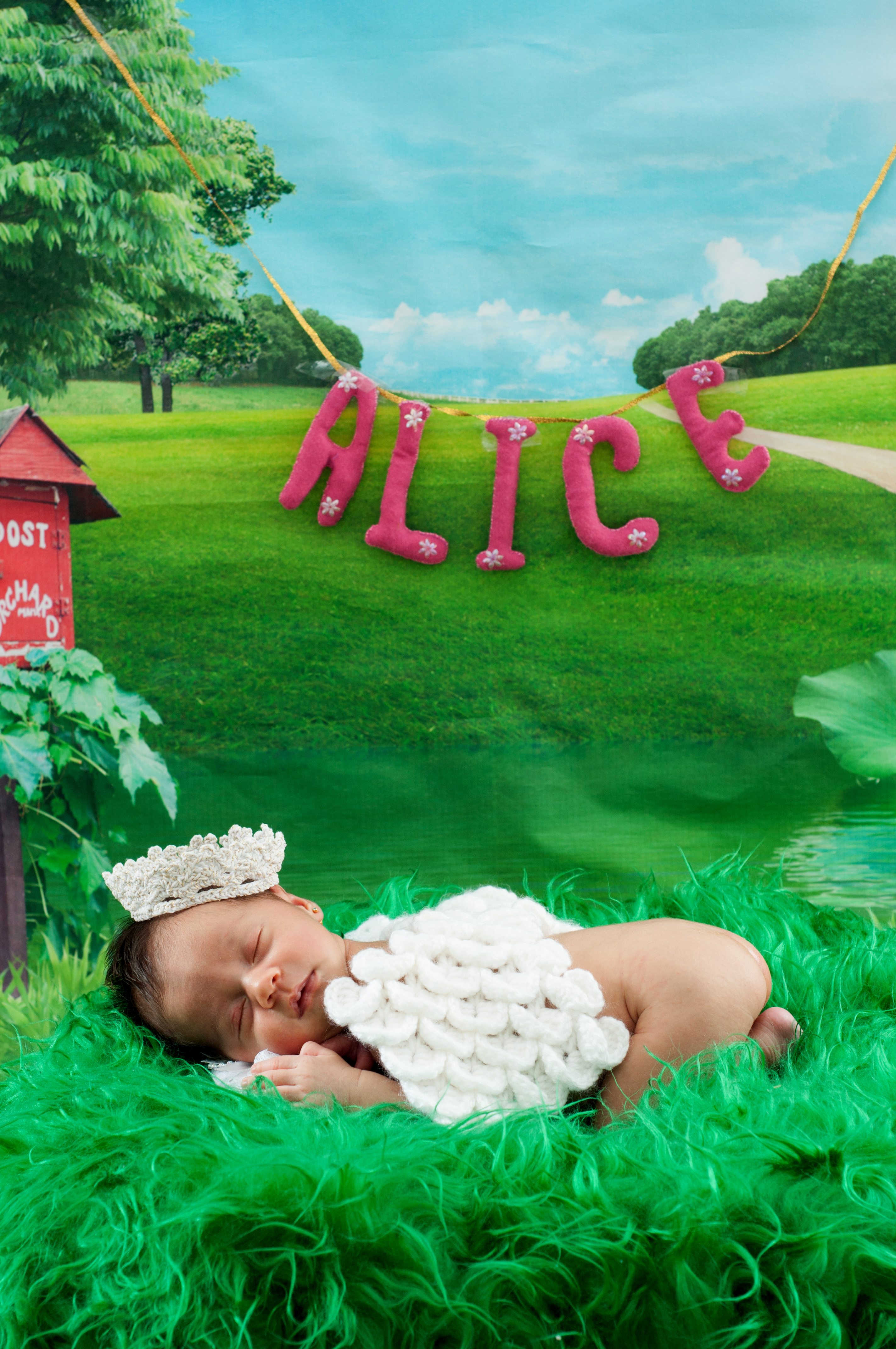 LC - Alice newborn (107 of 141)