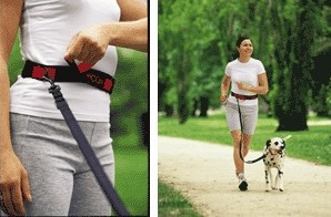Riverton Chiropractor - Active Dog Walking Belt