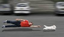 Chiropractic Riverton - Dog Walking Injury