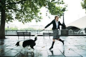 Riverton Chiropractic  - Dog Walking Injury