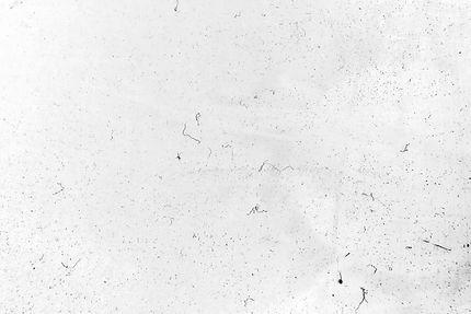 15-White.jpg