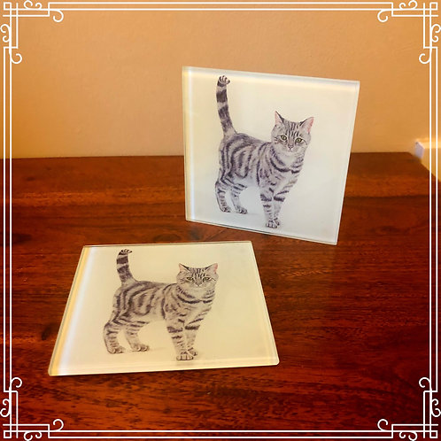 Glass coaster - Tabby Cat