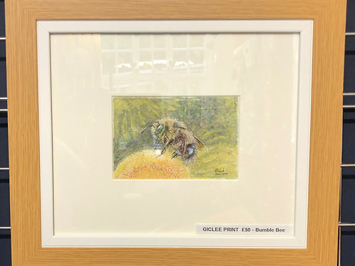 Bumble Bee - Framed Print