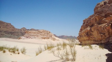 The beauty of the desert