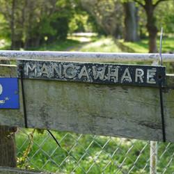 Welcome to Mangawhare