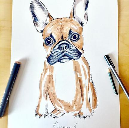 Meet Desmond the #frenchbulldog. This wa
