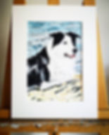 Jack was a hugely loved dog, very much p