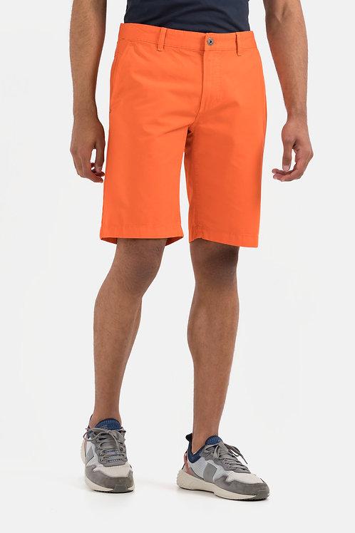 497510 orange