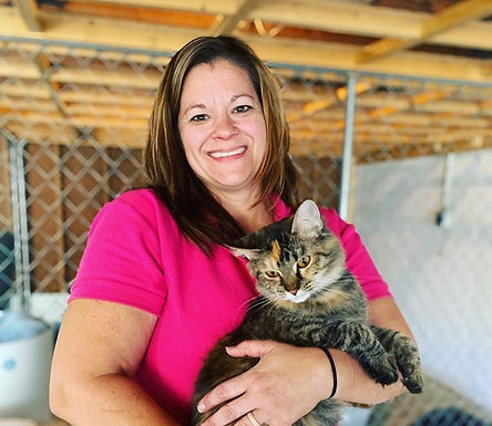 Volunteer to help cats and kittens at Rural Animal Rescue Effort (RARE)