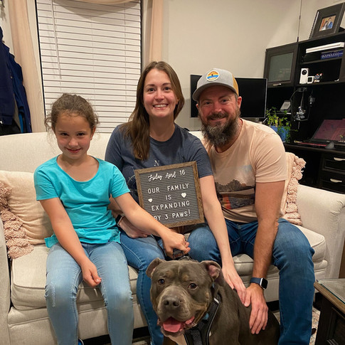 Scotty the Tripawd & Family