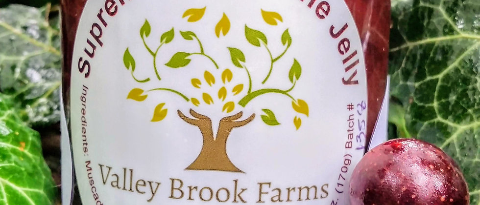 Valley Brook Farms Supreme Muscadine Jelly
