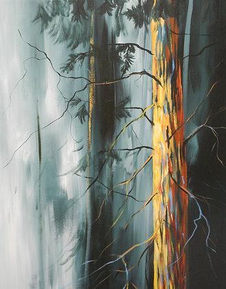 Woods Of Light 16x20