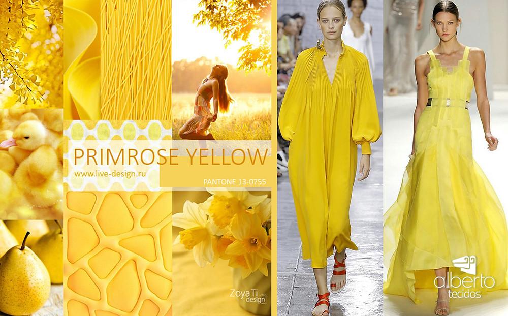 Primrose yellow pantone cor