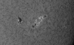 2020 10 28 1338 Zone active AR2778 H-alpha