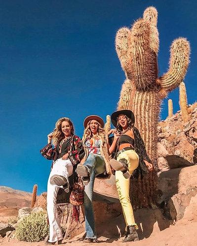 Valle de los Cactus