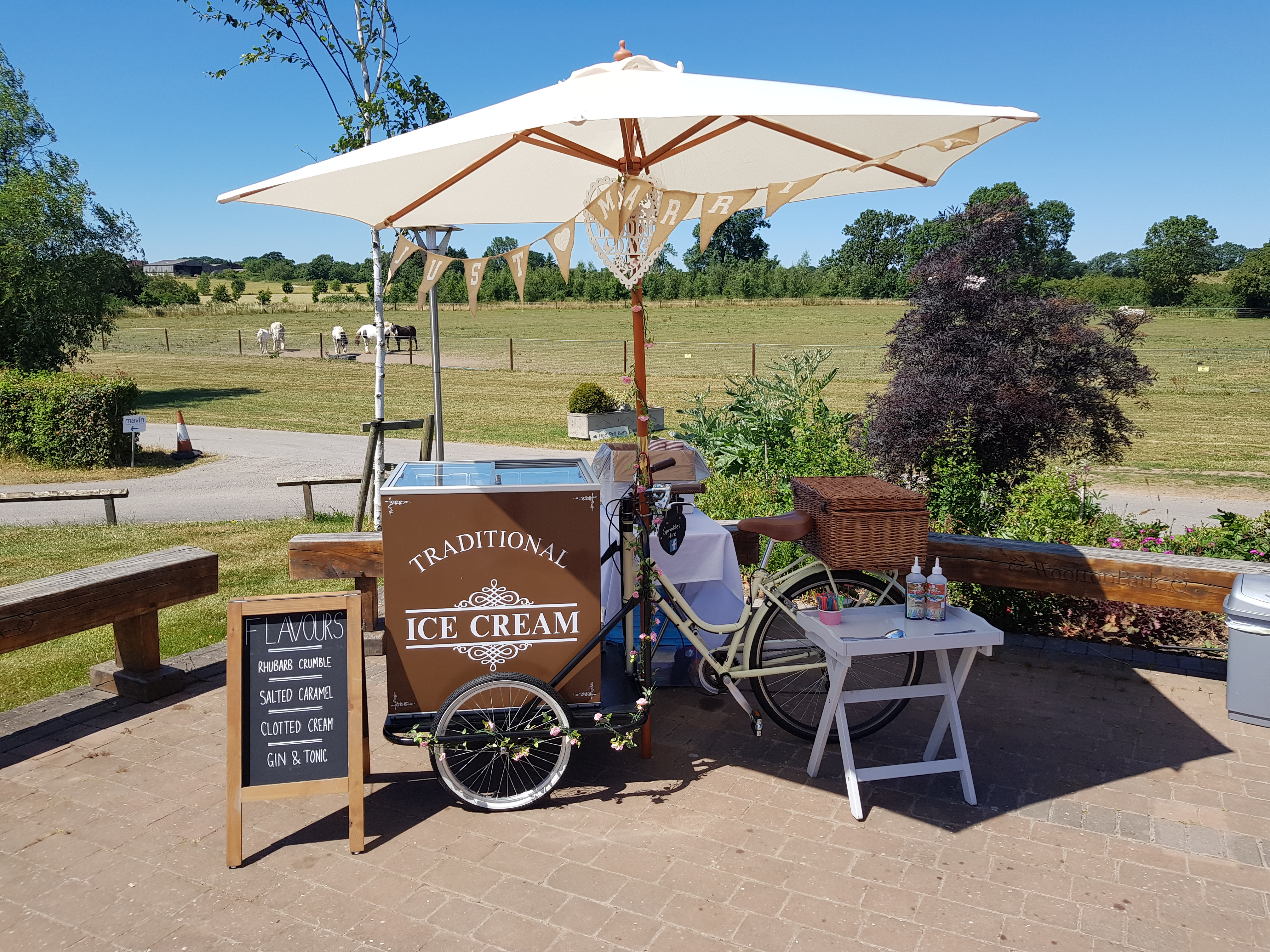 Sprinkles hire ice cream tricycle hire nuneaton bedworth warwickshire