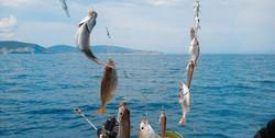 Морская прогулка, рыбалка