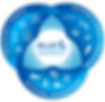 BECRC_Venn-Diagram-1-800x776.png