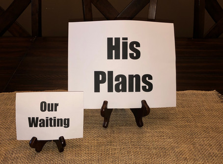 Blog #28- Our Waiting... His Plans