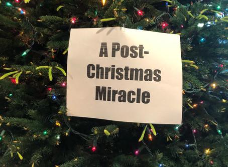 Blog #26- Post-Christmas Miracle