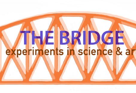 SciArt's The Bridge Residency