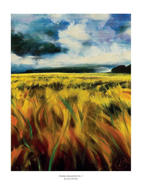Cleddau Barleyfield #1 - Signed Print