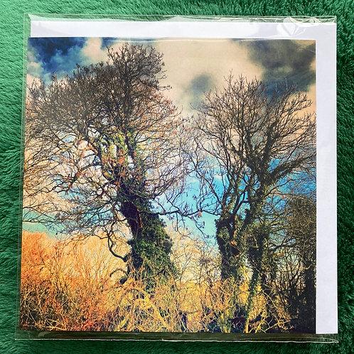Secret Skies, Lawrenny 2018 - Greetings Card