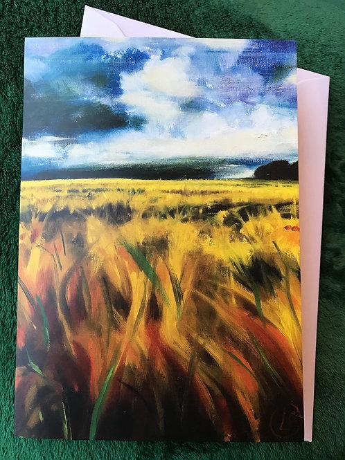 Cleddau Barleyfield #1 2017 Greetings Card