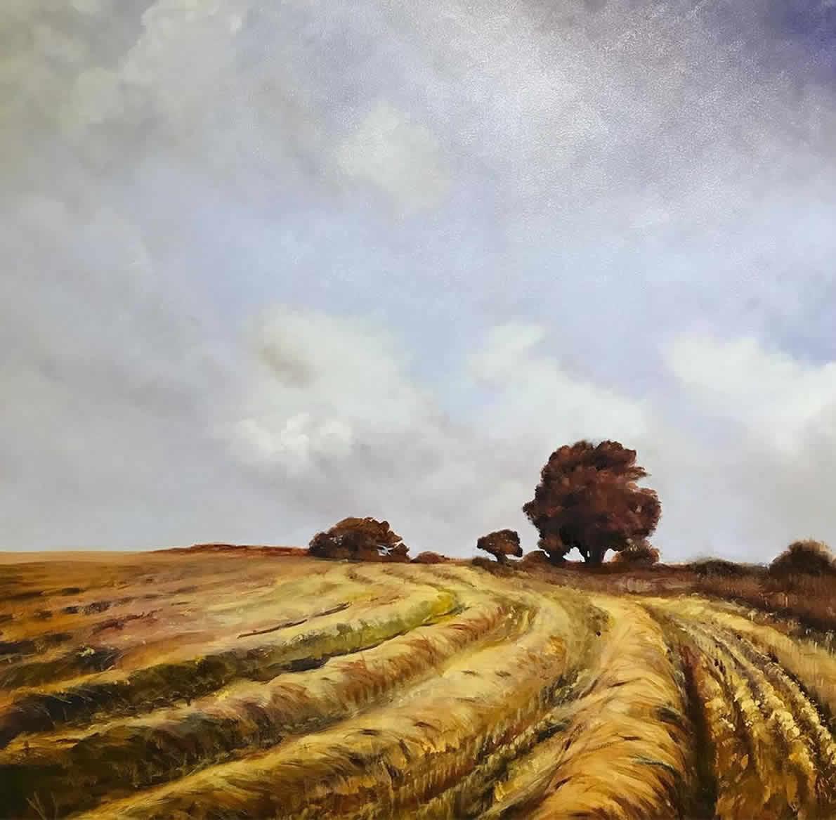 Cleddau Barleyfield #3, 2018