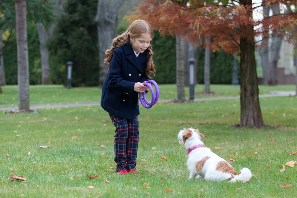 ילדה משחקת פולר עם כלב