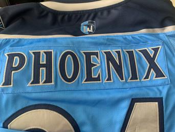 Atlanta Phoenix Travel Hockey (Atlanta, GA)