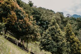 Private Jungle Track