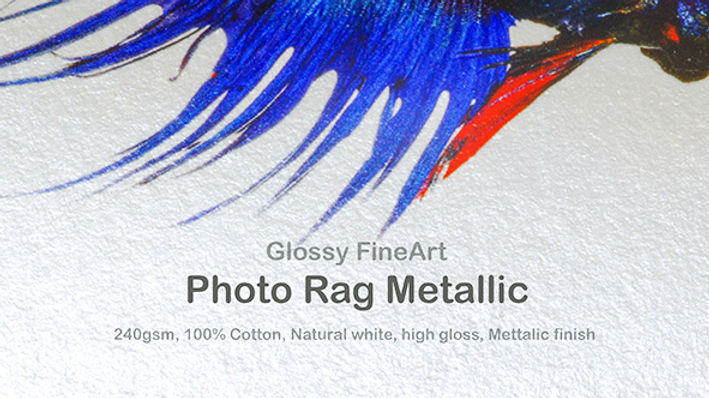 Photo Rag Metallic web icon.jpg