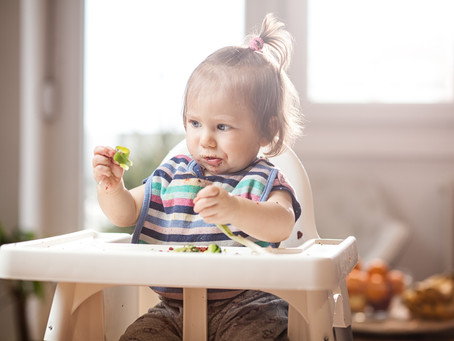 Baby Led Weaning vs Purées