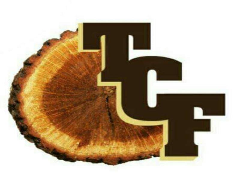 Logo - True Cord Fire Wood.jpg