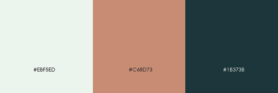 b469a784920417.5d6ca9749d5c5.png