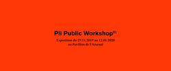 Pli Public Worshop