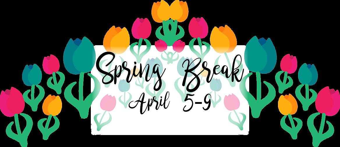 spring break header.png