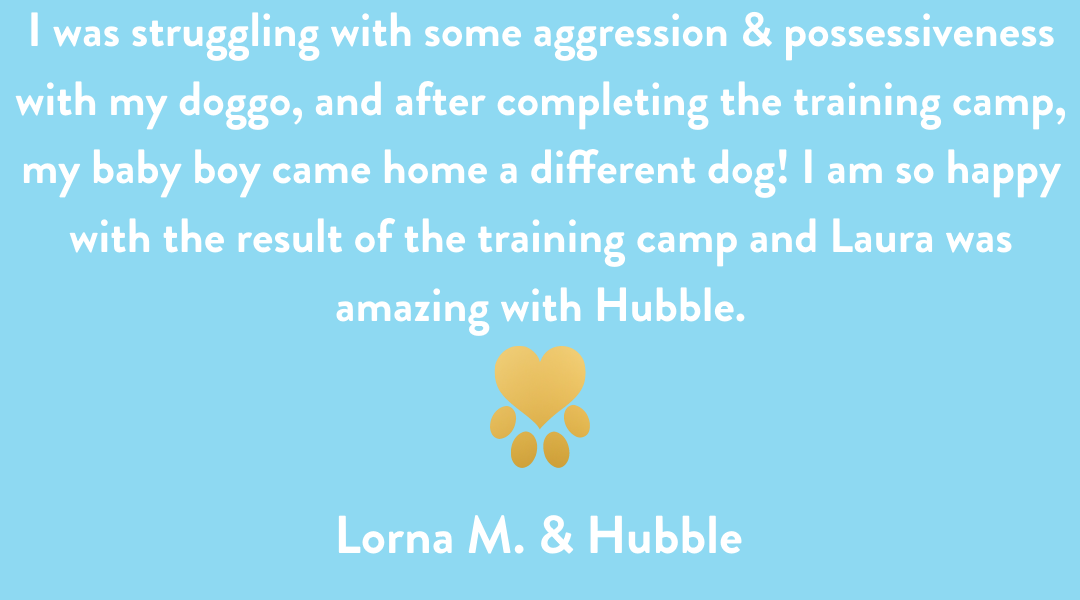 Dog Training Cedar Rapids, Lorna & Hubble