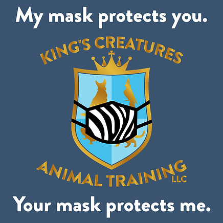mask up.png