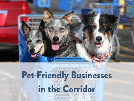 Pet-Friendly Businesses in the Corridor