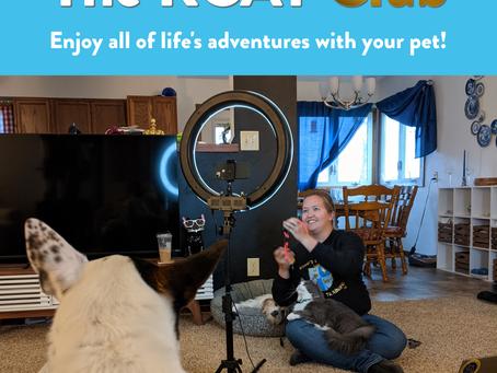 The KCAT Club: Online Pet Training Membership