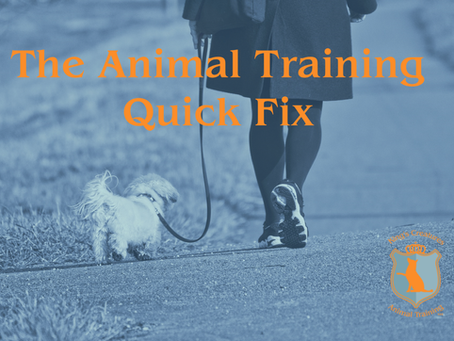 The Animal Training Quick Fix