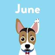 Pet Social June.png