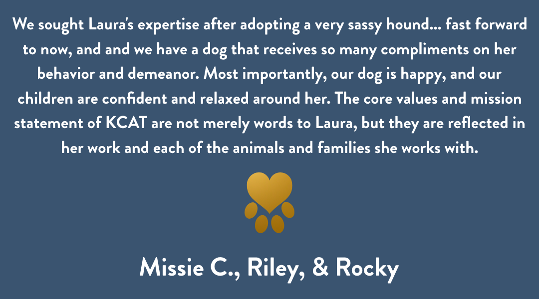 Dog Training Cedar Rapids, Missie, Rocky, & Riley