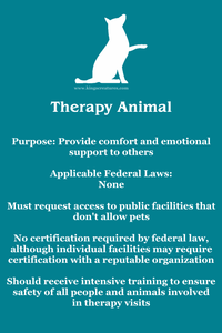Therapy animal description. Teal background, white dog from King's Creatures Animal Training LLC logo at top, white text