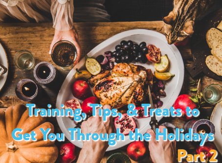 Training, Tips, & Treats to Get You Through the Holidays: Part 2