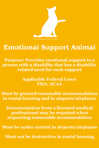 Touches on the basics of emotional support animals. Orange background, white dog from King's Creatures Animal Training LLC logo at top, white text