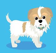 Dog Training Cedar Rapids, Pet Training Cedar Rapids, Dog Socials, Korra Therapy Dog