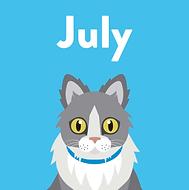 Pet Social July.png